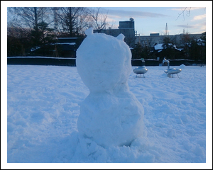 耳付き雪だるま
